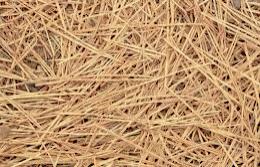 stale straw